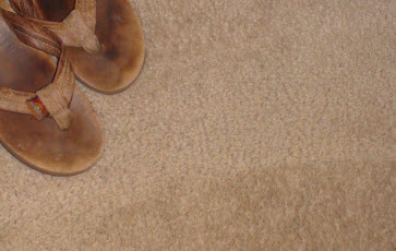 Top 10 Reasons Not To Have Carpet – Any Flooring vs Carpet