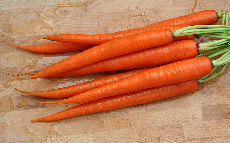 carrots with green tops