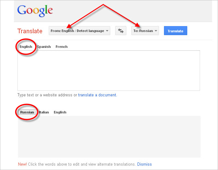 Google Translate Language Selector Detect 4
