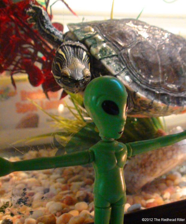 Turtle with the green alien