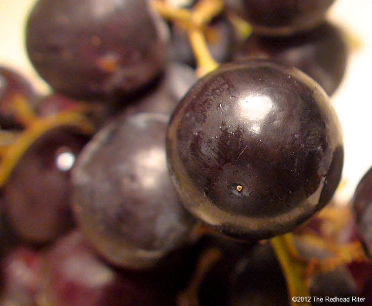 plump juicy shiny black grape