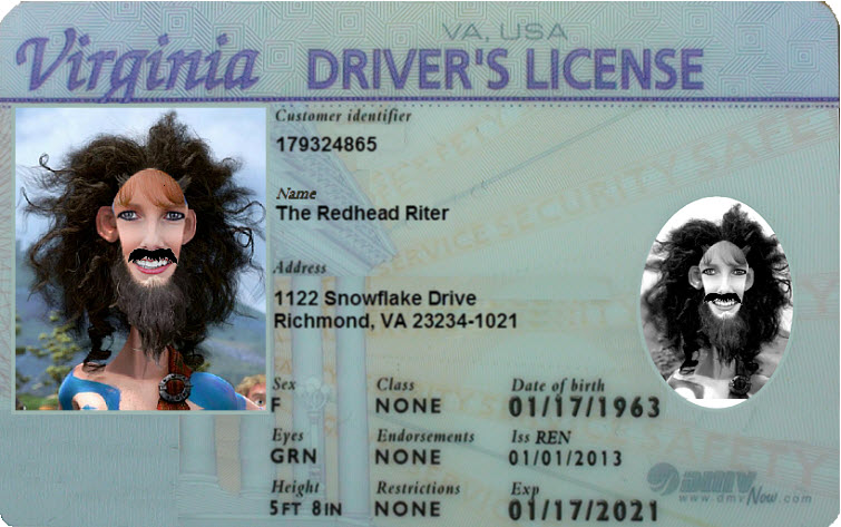 virginia driver's license – don't smile!