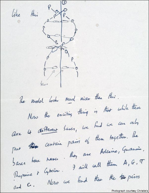 Francis Crick DNA Discovery Letter pg 3