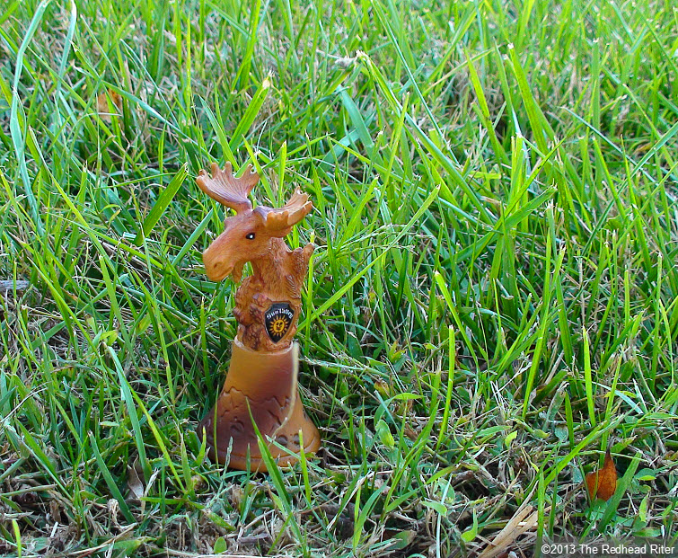 brown moose bell in grass