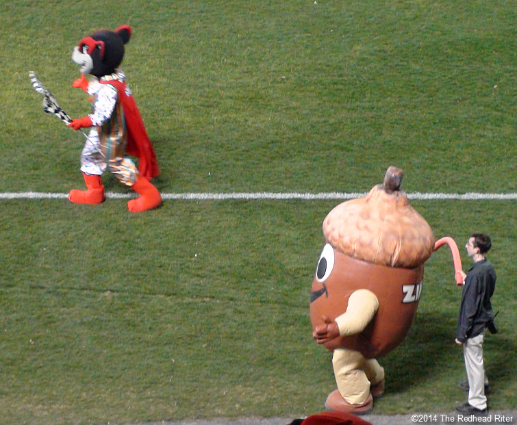 12 flying squirrel and zinger acorn nut mascot opening night