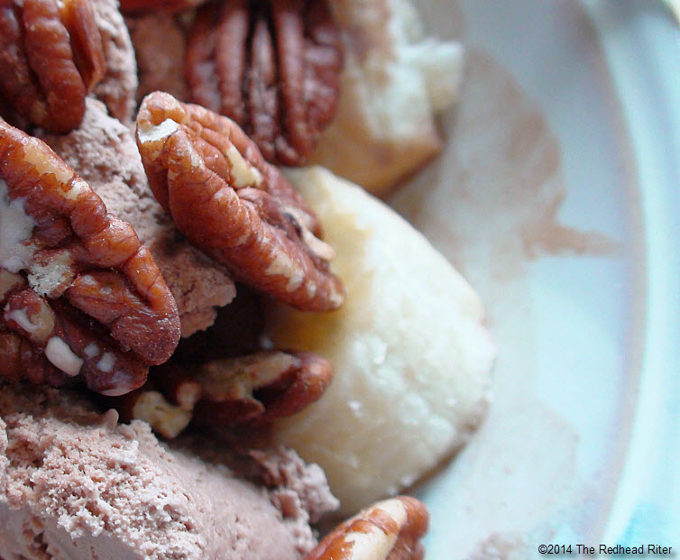 17 Facts About Pecans Chocolate ice cream