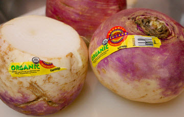 Thumbnail image for Best Tender Country Turnip Recipe – How To Cook Delicious Turnips Every Time