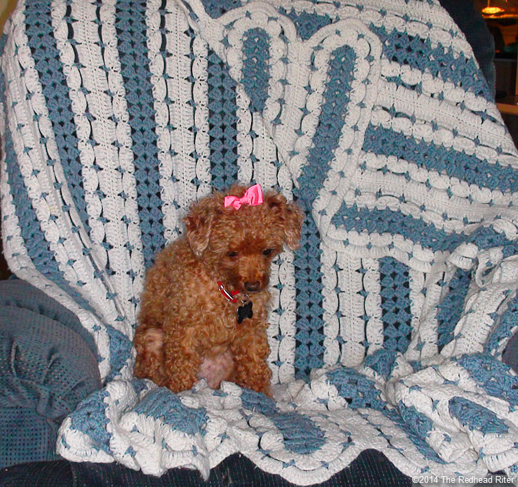 crocheted afghan blue white bella red poodle bow
