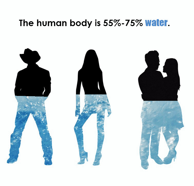 staying balanced human body is mostly water