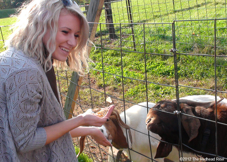 Alyssa at Graves Mountain feeding goats