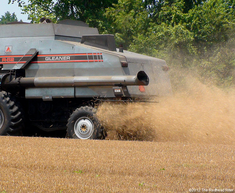 combine harvester harvesting wheat field 6