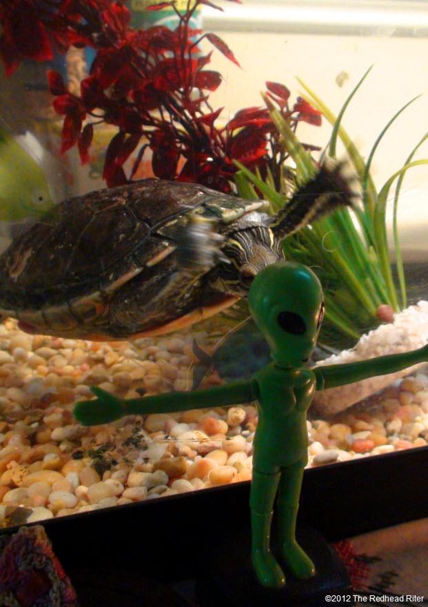 Turtles legs shaking close to alien