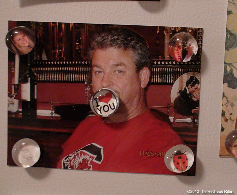 refrigerator photo and magnets