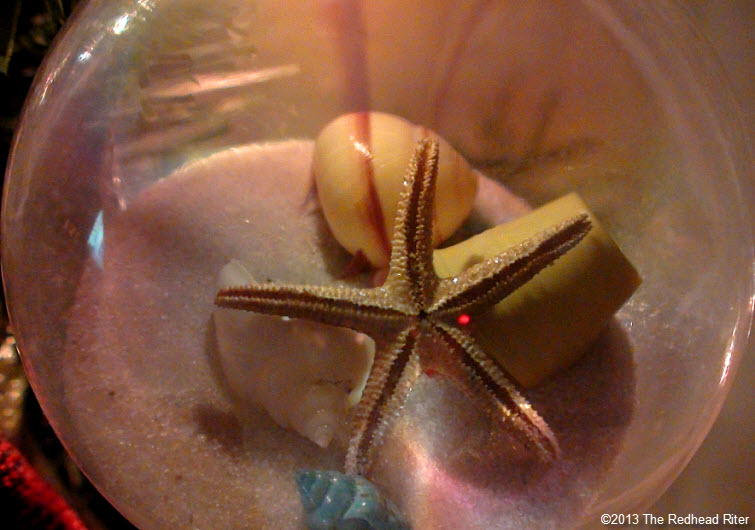starfish shells sand glass globe