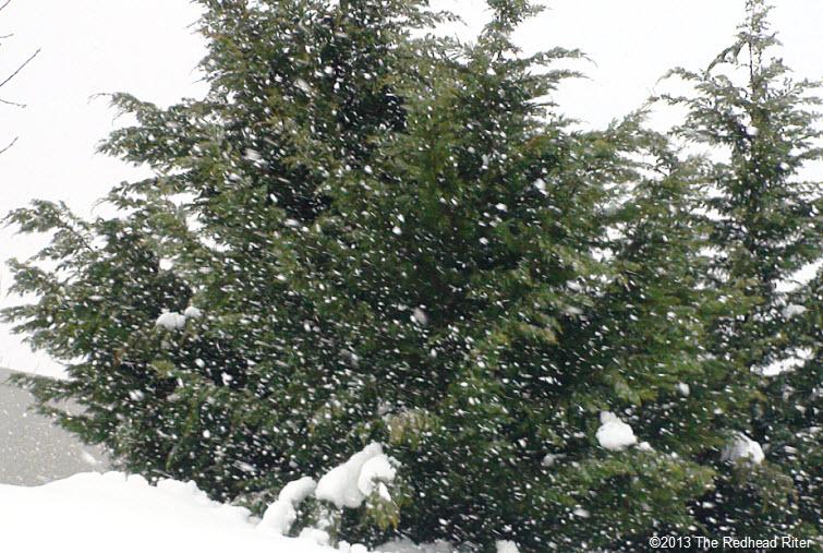 big snowflakes deep snow richmond virginia
