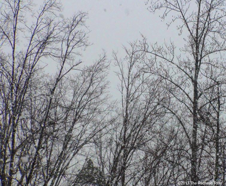 gray sky falling snowflakes