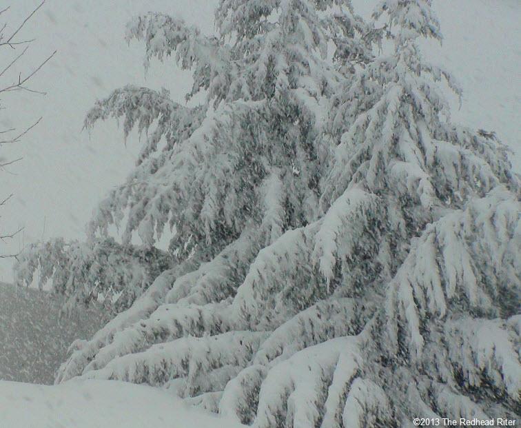 snow snow snow richmond virginia