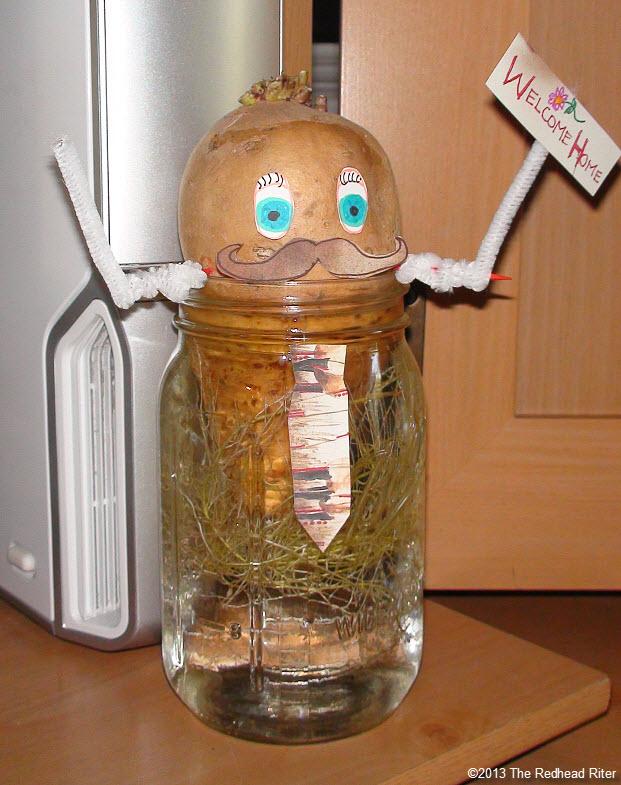 Mr Sweet Potato Head in water roots