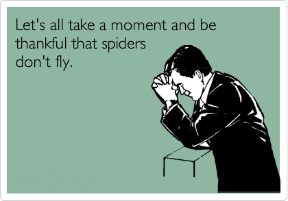 Humorous Quotes With Cartoon Pictures spiders