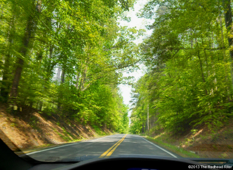 interstate hair cut sunny green forest windshield