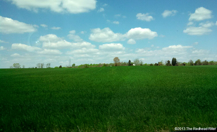 the redhead riter green country field blue sky