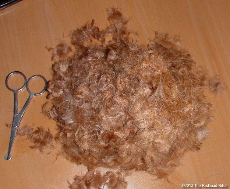 big pile of red poodle fur with scissors
