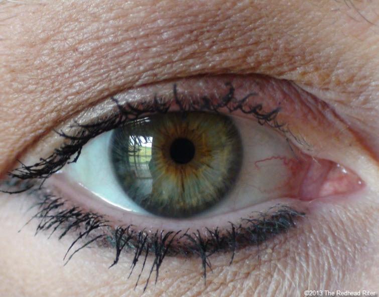 Green Ring Around Brown Iris