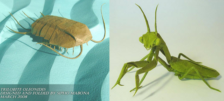 origami artist mobano origami bug praying mantis