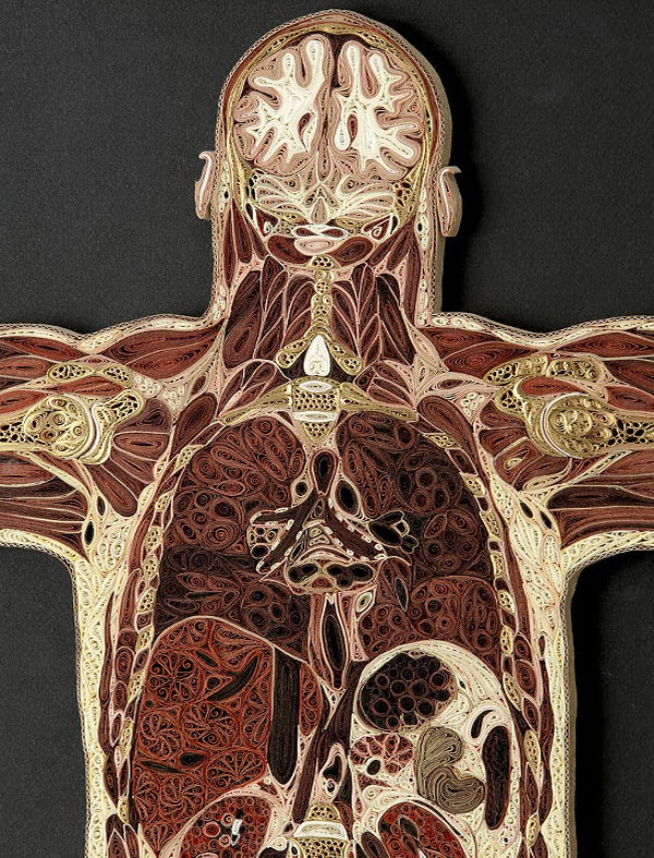 A detail of Coronal Man showing the head and thorax
