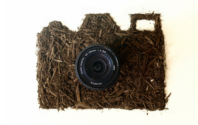 camera  Dirt Illustration Sarah Rosado