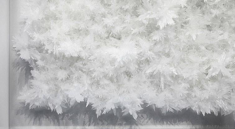 Tokujin Yoshioka crystals
