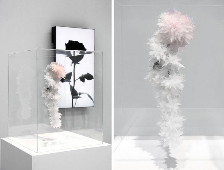 Tokujin Yoshioka flower crystals