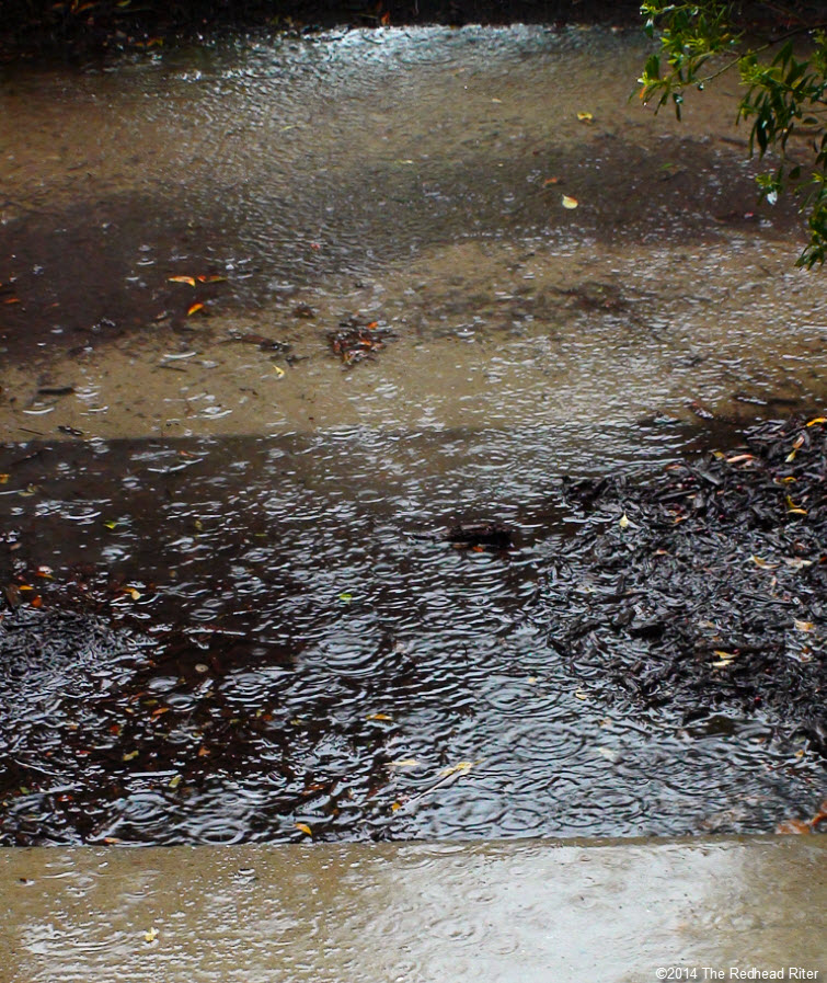 pouring rain ripples in puddle