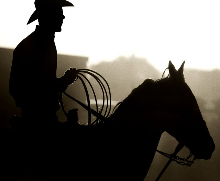 cowboy silhouette on horse