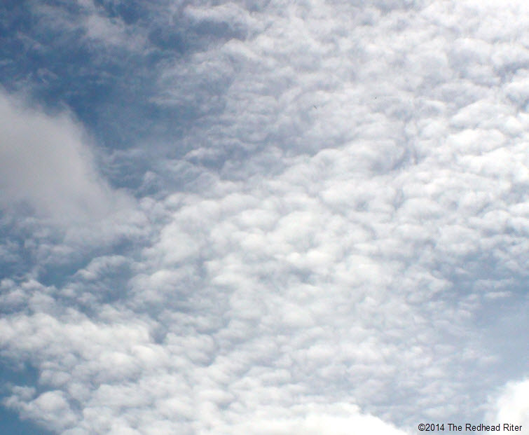 white monkey bread clouds