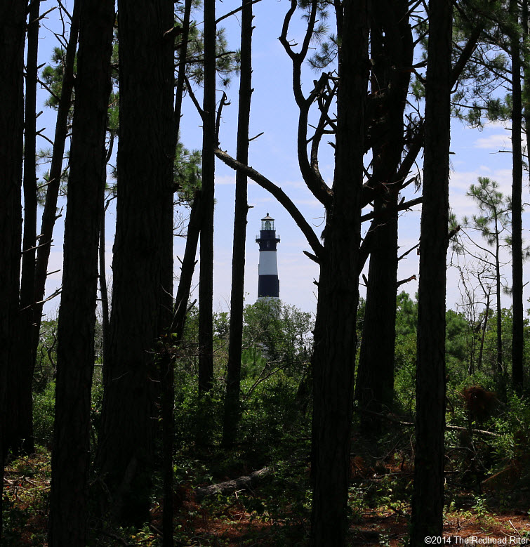 Bodie Island Lighthouse, Nags Head, NC forest tall